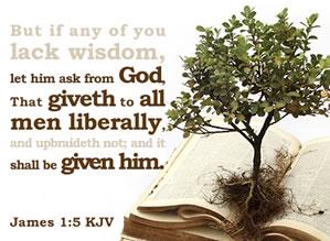 Wisdom Flat